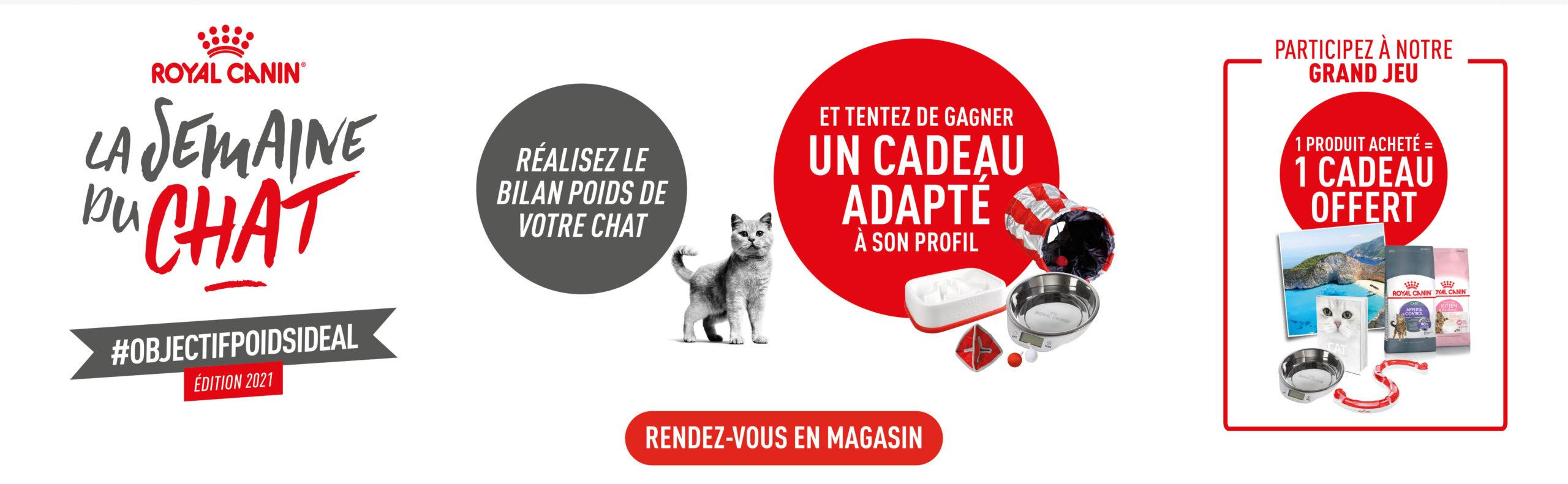 Bon plan Venez découvrir la semaine du chat dans votre magasin Paquet Jardin !